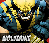 Top Left Wolverine