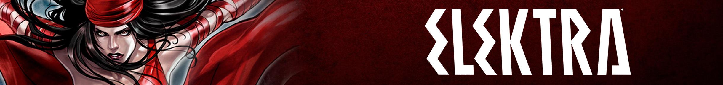 Elektra Merchandise Banner