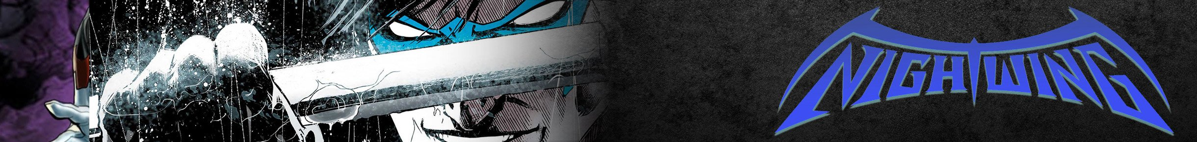 Nightwing Hoodies Banner